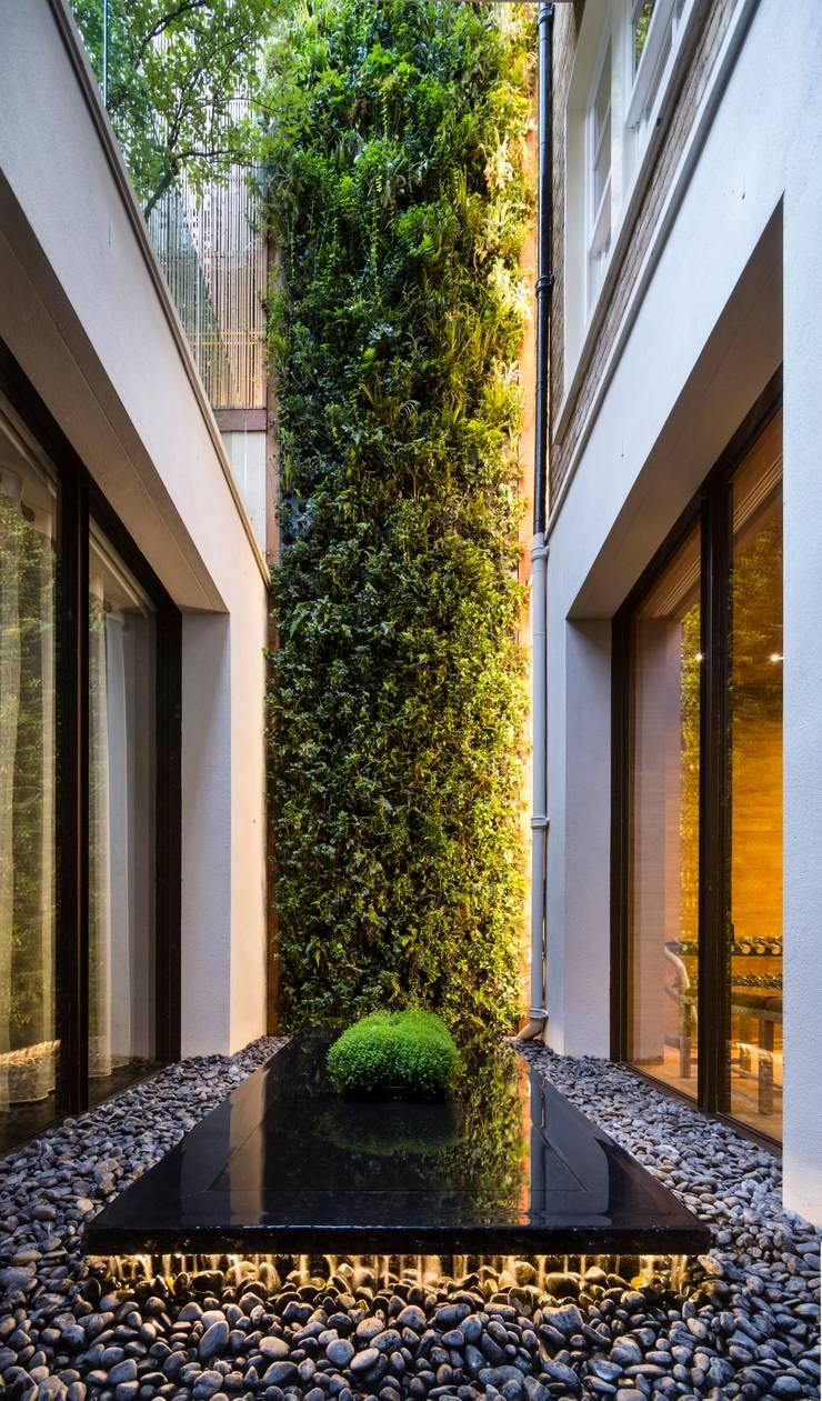 Private Garden, Belgravia, Living Wall:  Garden  by Biotecture