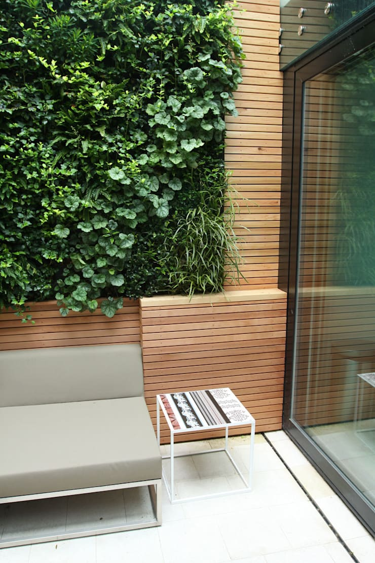 Private Courtyard, London, Living Wall:  Garden  by Biotecture