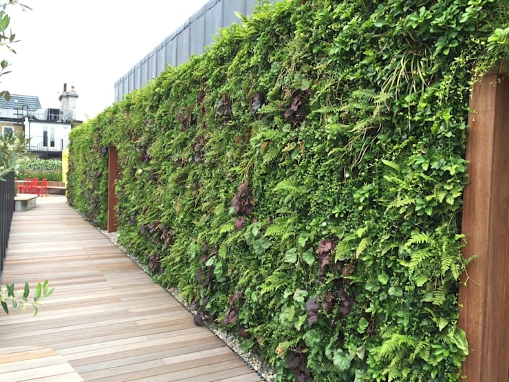 Coca Cola HQ Roof Terrace:  Balconies, verandas & terraces  by Biotecture