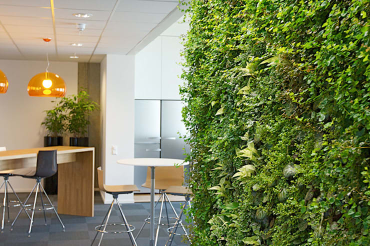 Office Break-out Space, Trondheim, Norway:  Interior landscaping by Biotecture