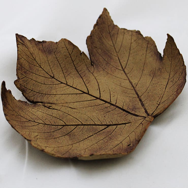 Small Leaf by Eve Mahoney:  Artwork by Riverside Art and Glass, Contemporary Gallery