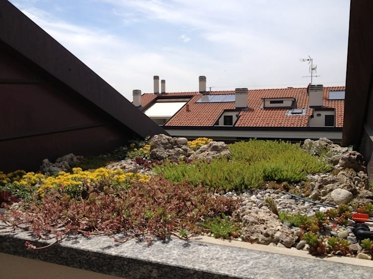 Minimal con brio: Terrazza in stile  di Architettura del verde