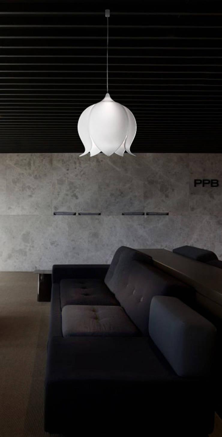 Physalia: Maison de style  par DAVID TOUZAIN