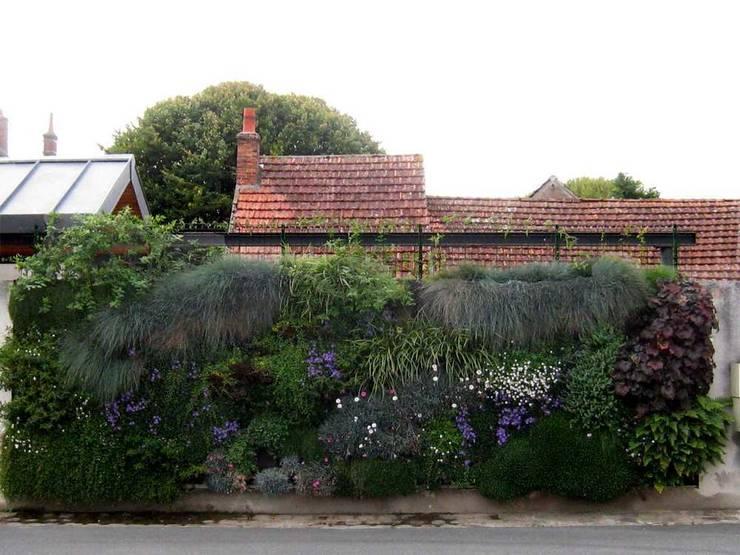CASAVERDE le mur végétal: Paysagisme d'intérieur de style  par contact295