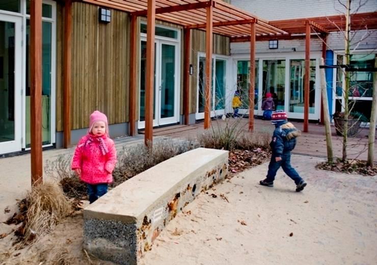 Schools by No Label, Modern
