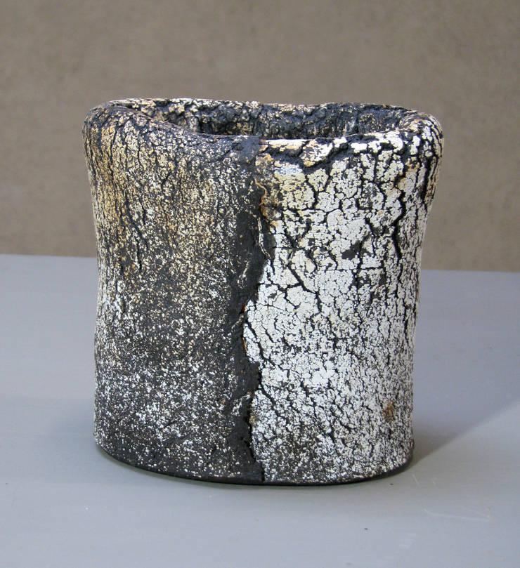 vases: Art de style  par JANE NORBURY