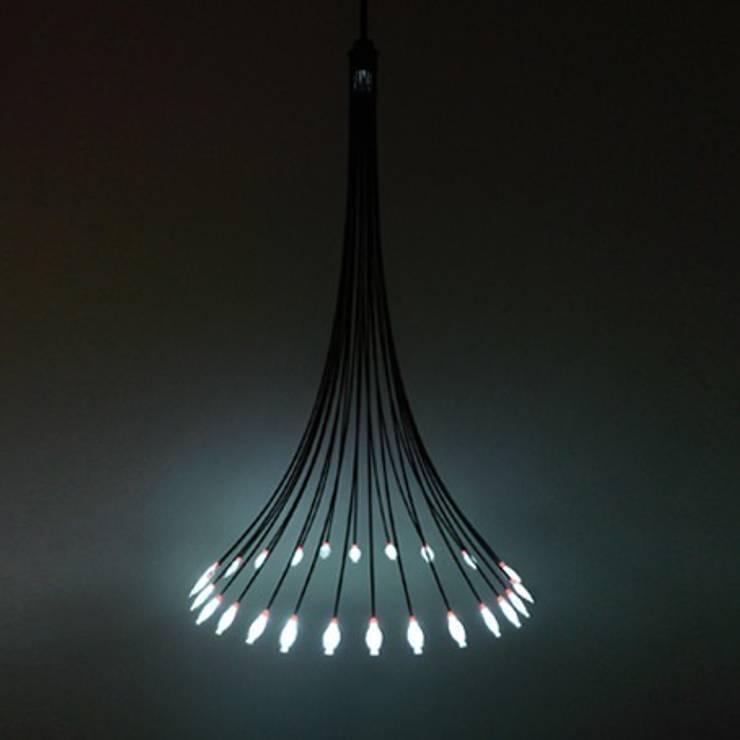 Sakana Light:   by Tom Fereday