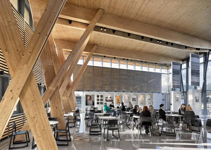 The Arts Space:   by Hewitt Studios