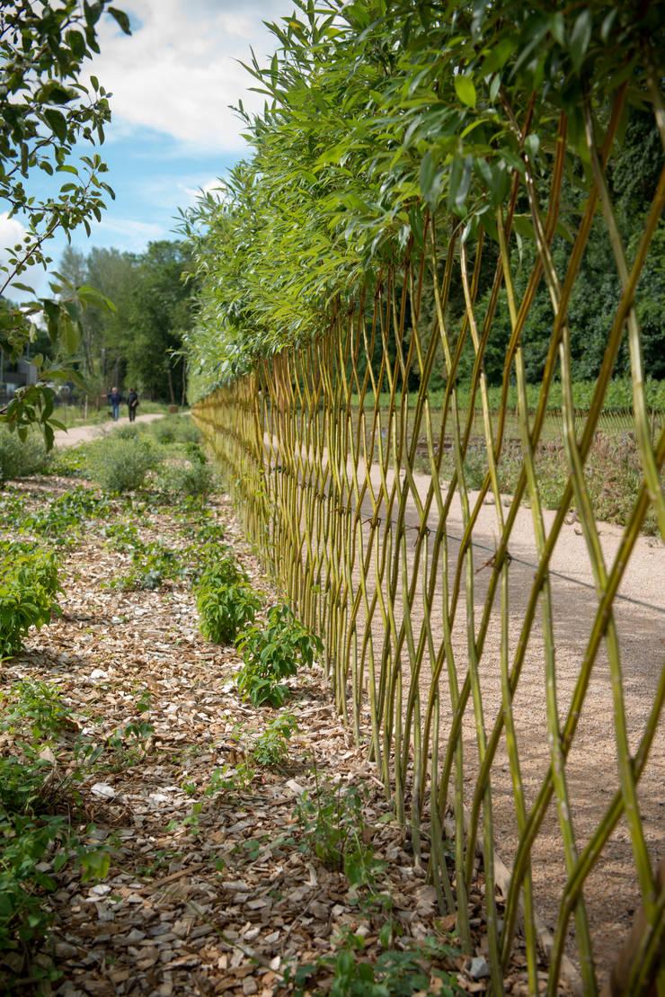 Parc Naturel de Sanzy:  de style  par Equinoxe Paysages
