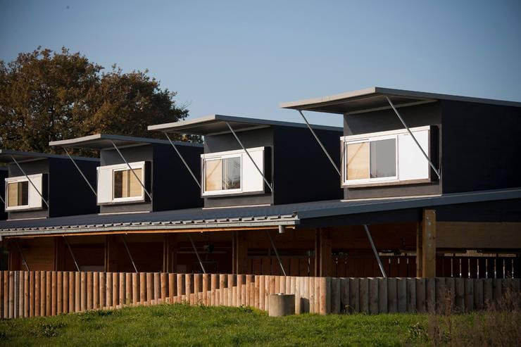 Création logement et gîtes de Chasse.: Maisons de style  par Christian Larroque