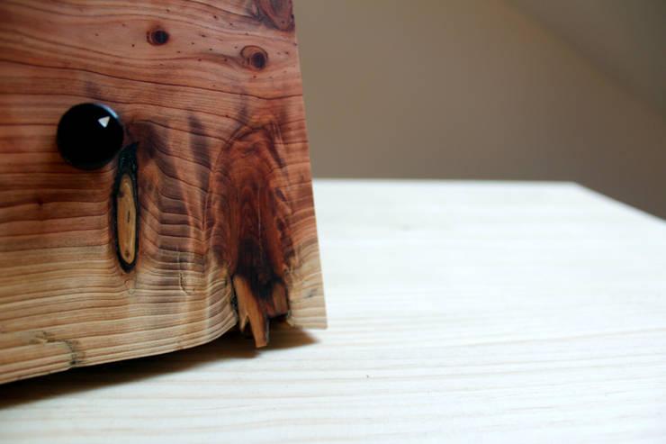 Cacabelos: Hogar de estilo  de BRZ wood DESIGN