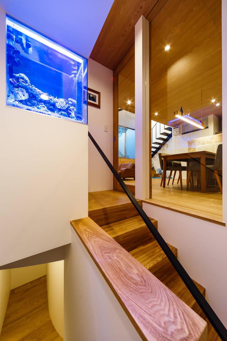 haus-wave: 一級建築士事務所hausが手掛けた廊下 & 玄関です。
