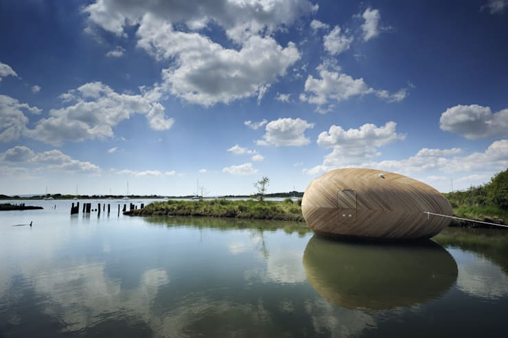 Stephen Turner's Exbury Egg:   by SPUD Group