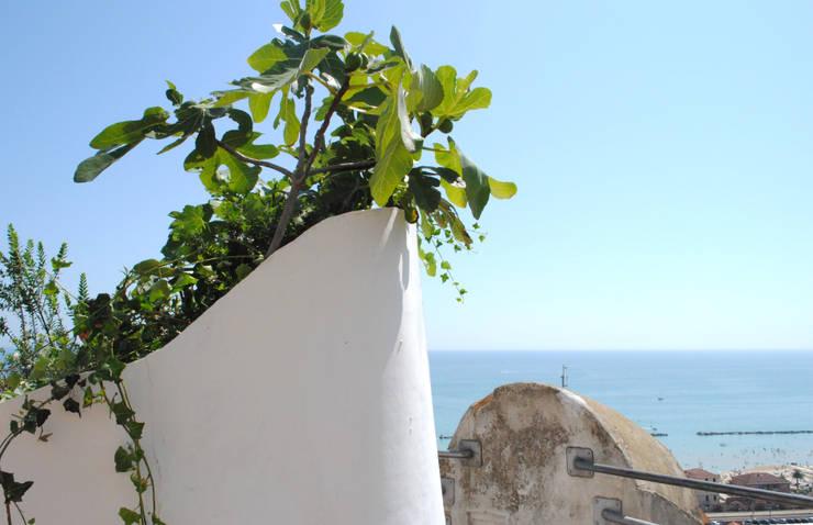 Calipso – Καλυψώ: Giardino in stile  di Cecchetti Denarié Stefàno, Mediterraneo