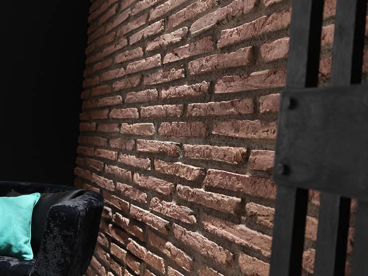 Oficinas y tiendas de estilo  por PANELPIEDRA