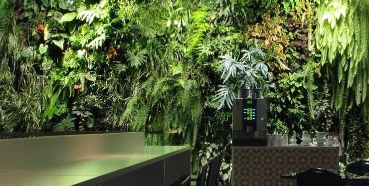 Bancone ristoro.: Negozi & Locali Commerciali in stile  di Dotto Francesco consulting Green