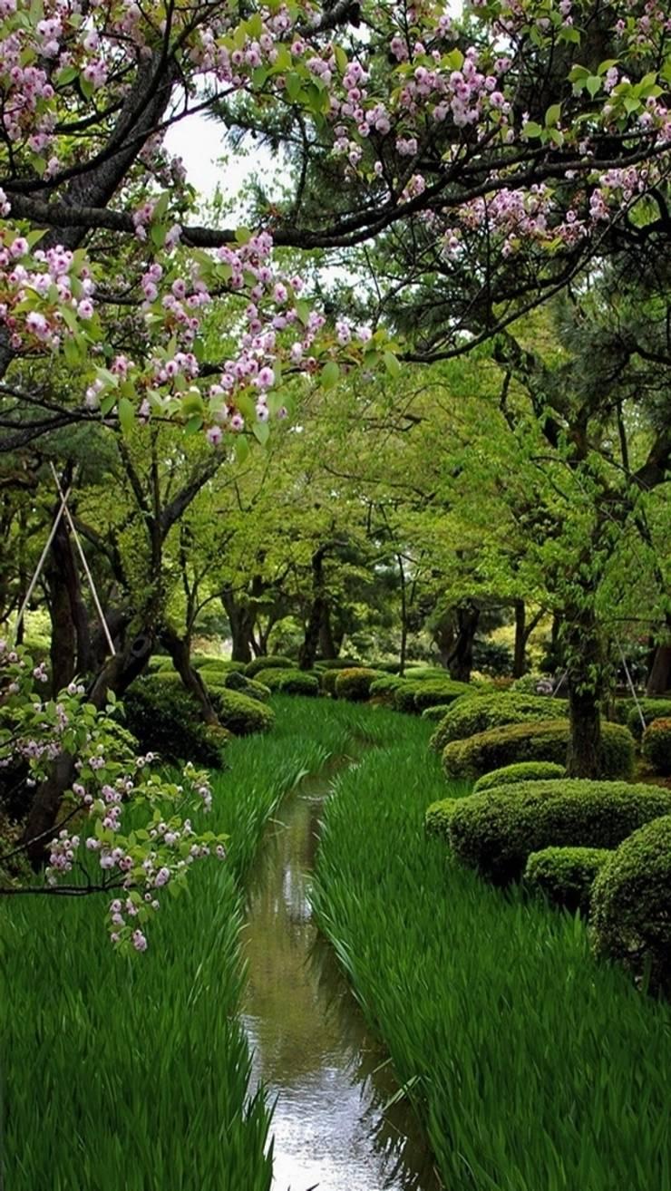 庭院 by Dotto Francesco consulting Green, 隨意取材風