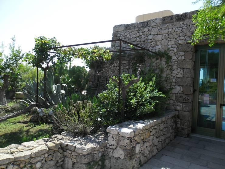 A un tuffo dal mare: Giardino in stile  di  MELLOGIARDINI EXTERIOR DESIGNERS