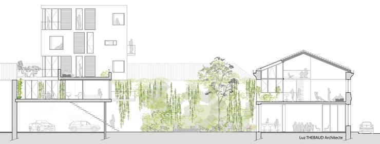 Agora - coupe bâtiments-jardin: Hôtels de style  par Anne-Luz Thébaud