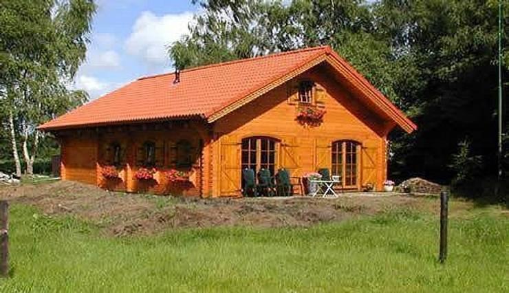 lori 12: Casa in stile  di CasediLegnoSr