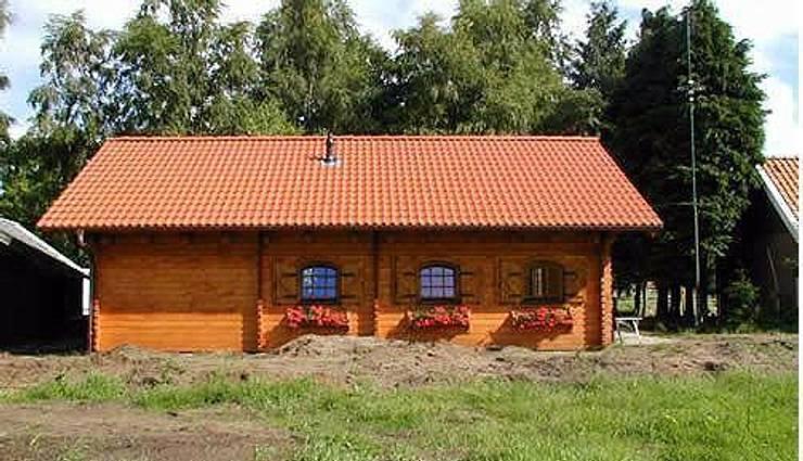 lori 2: Casa in stile  di CasediLegnoSr