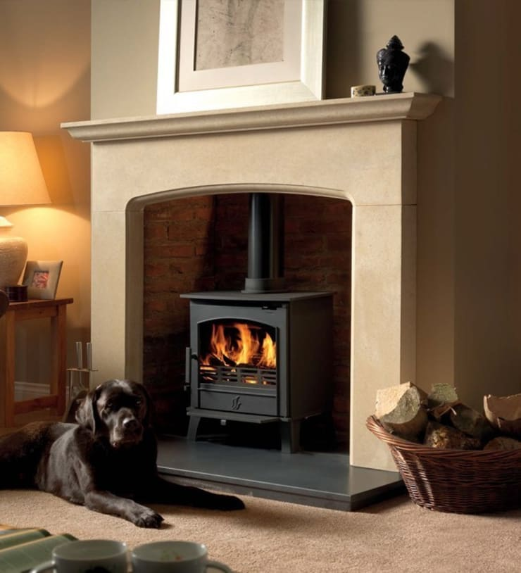 ACR Earlswood DEFRA Approved Wood Burning / Multi Fuel Stove:  Living room by Direct Stoves