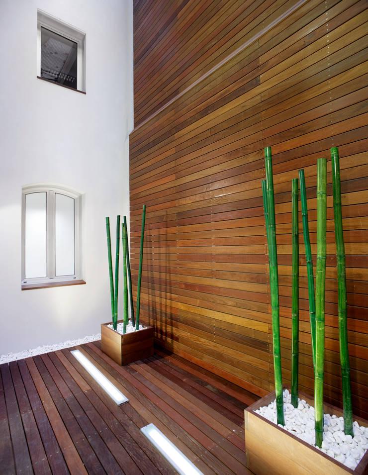 Proyecto Patio de Luces – Oficinas Unicaja Barcelona: Oficinas y Tiendas de estilo  de Paisajismo Digital