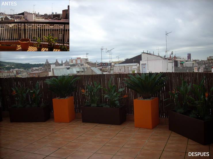 Terraza en Atico en Barcelona: Jardines de estilo  de Paisajismo Digital