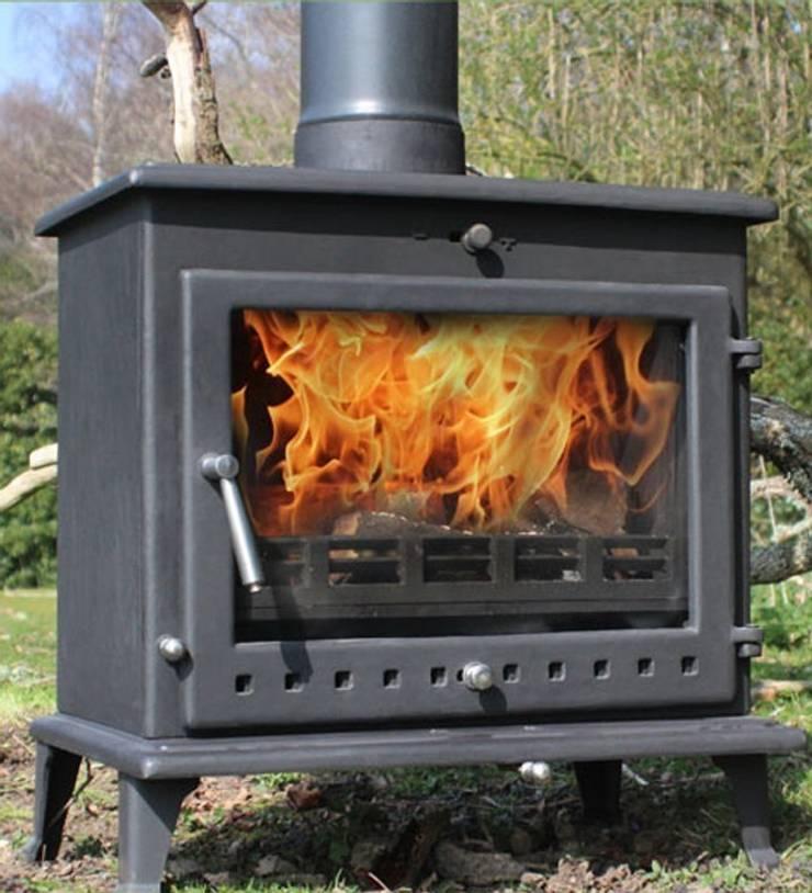 Ekol Crystal 12kW Wood Burning - Multi Fuel DEFRA Approved Stove:  Living room by Direct Stoves