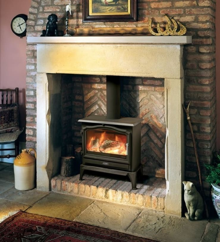 Esse 100 Multi Fuel - Wood Burning Stove:  Living room by Direct Stoves