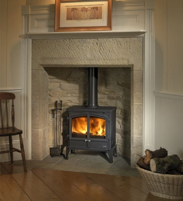 Esse 100 Double Door Wood Burning - Multi Fuel Stove:  Living room by Direct Stoves
