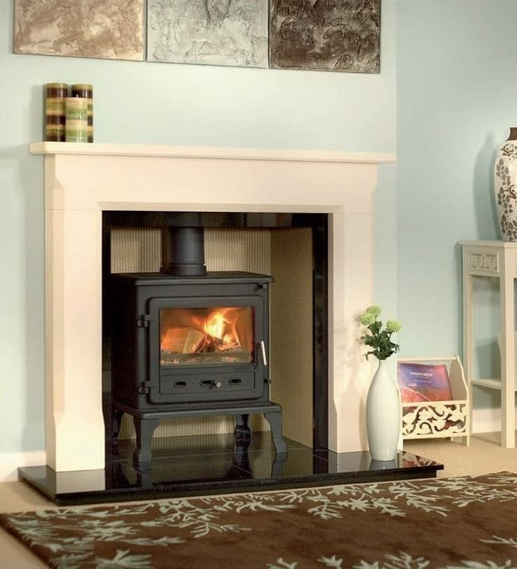 Firefox 8.1 Wood Burning - Multi Fuel Stove:  Living room by Direct Stoves