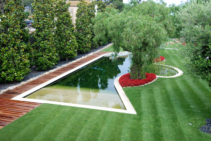 Piscina naturalizada: Jardines de estilo moderno de FG ARQUITECTES