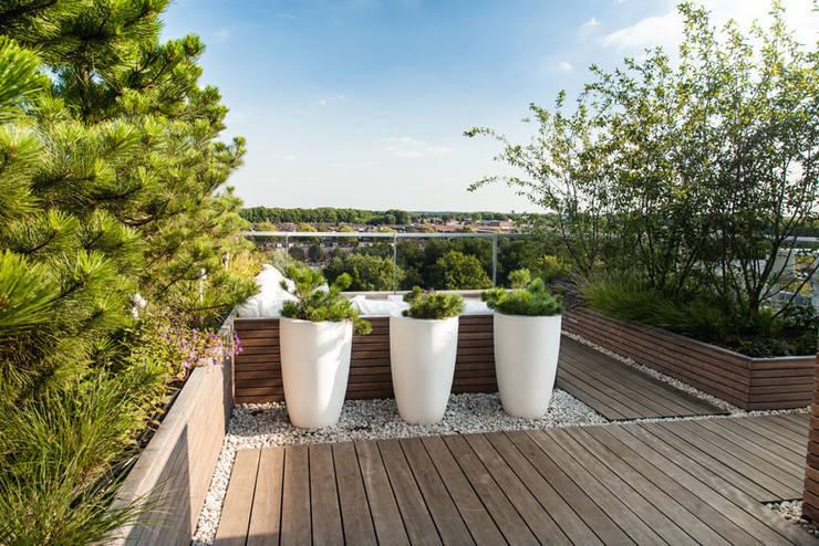 Projekty,  Taras zaprojektowane przez Studio REDD exclusieve tuinen