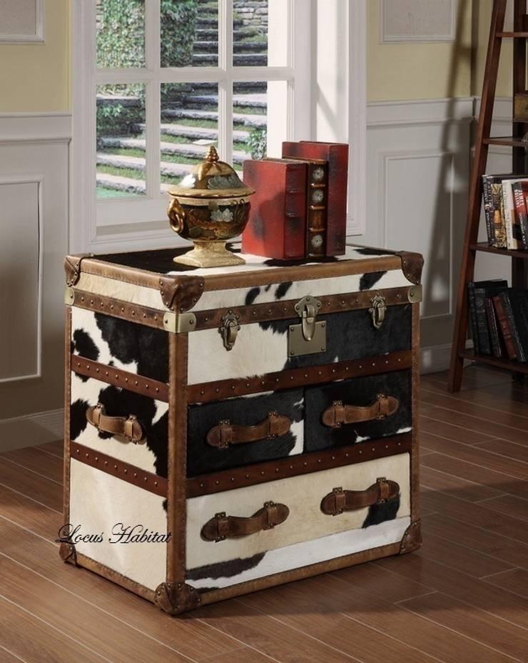Storage Trunk in Animal Hide:  Living room by Locus Habitat,