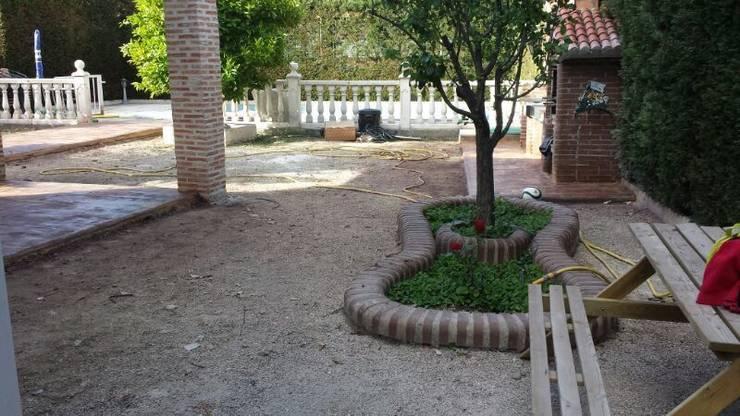 Reformas: Jardines de estilo  de Allgrass Solutions