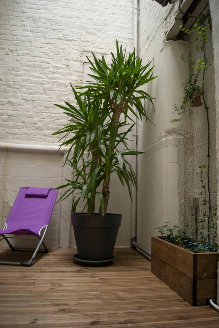 Après - Jardin d'hiver: Jardin d'hiver de style  par L&D Intérieur