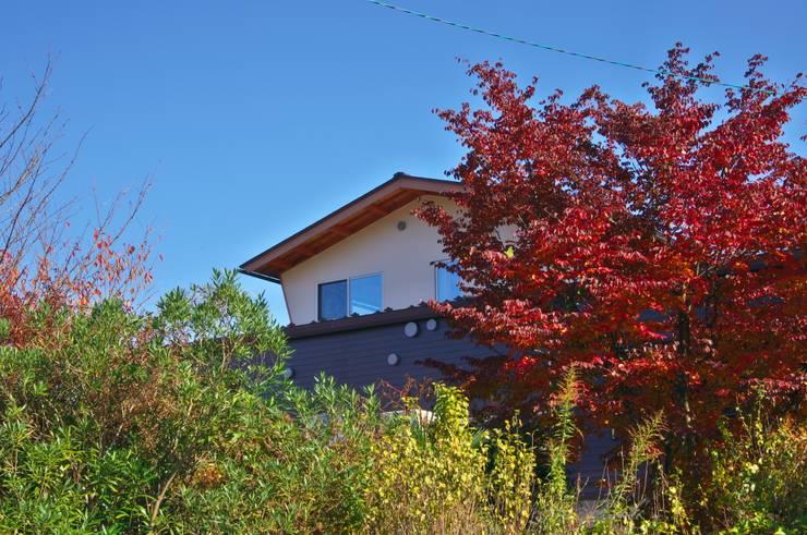 西側の既存植栽: DEMU建築設計事務所が手掛けた庭です。