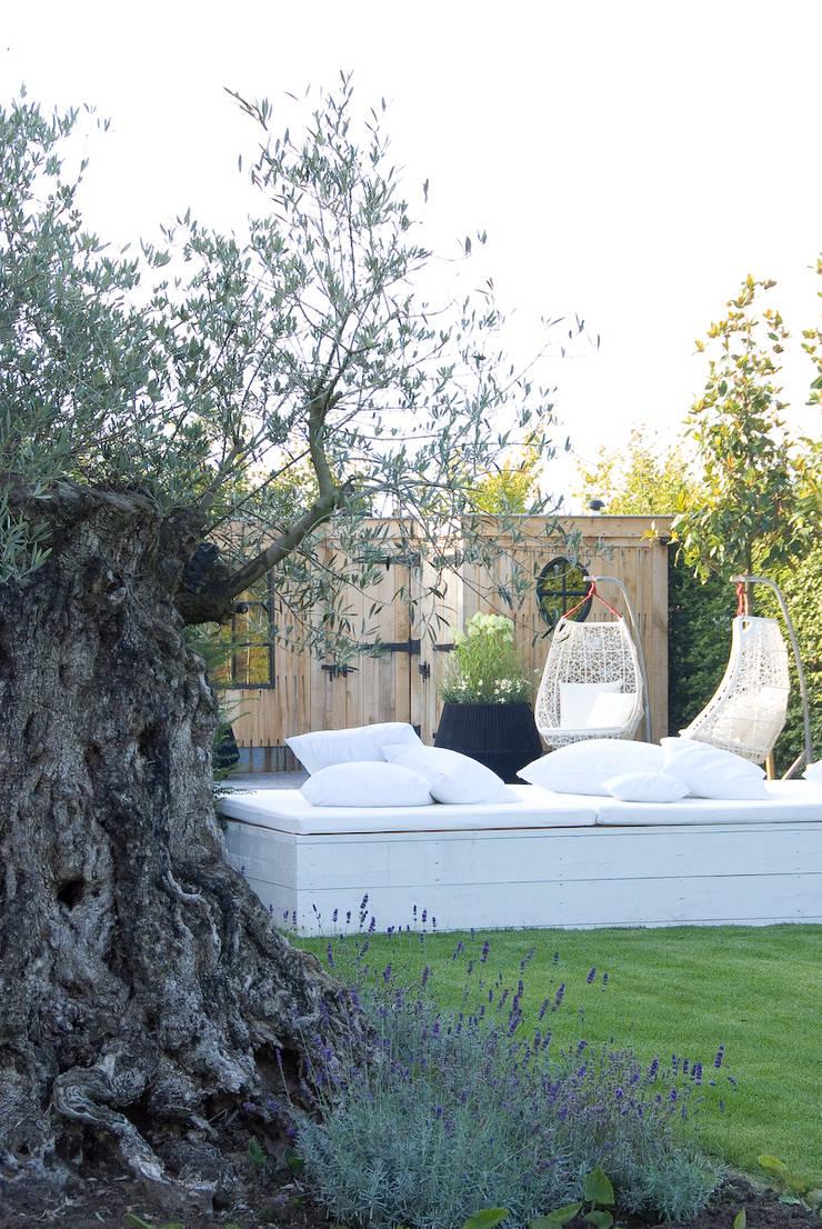Loungebank: moderne Tuin door Stam Hoveniers