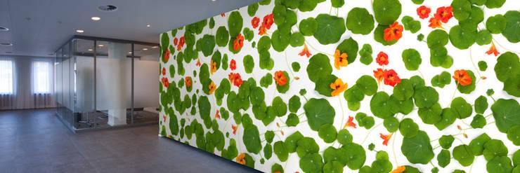Muurbloem Design Studio_Collection Flowers + Leaves_Nasturtium:  Muren & vloeren door Muurbloem Design Studio