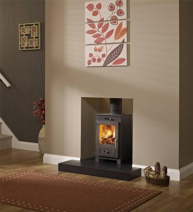 Hillandale Silverdale 5 DEFRA Approved Wood Burning Stove:  Living room by Direct Stoves
