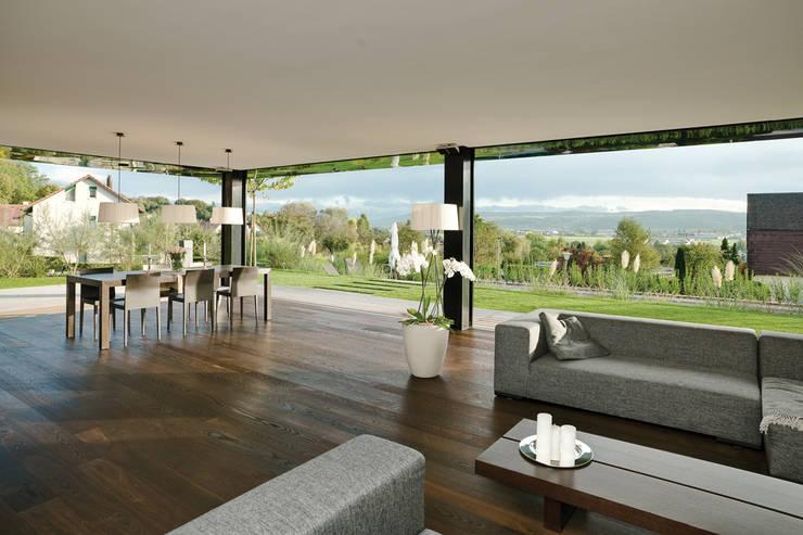 Sonnenhalde, Private Residence:  Windows & doors  by Descender Fronts by Kollegger