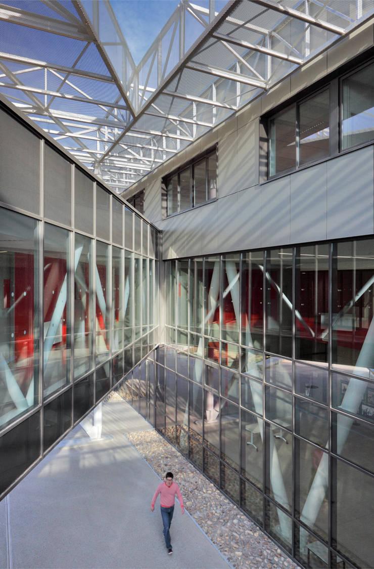 Le patio triangulaire vu depuis le niveau 1: Ecoles de style  par  Hellin Sebbag architectes associés