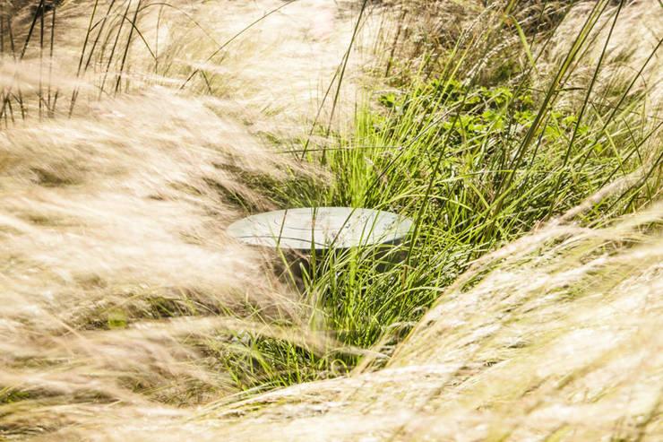 Outdoor speaker weggewerkt in de beplanting:  Tuin door Studio REDD exclusieve tuinen