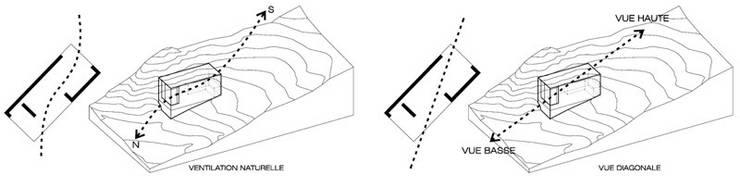 Stratégies morphologiques: Maisons de style  par Wen Qian ZHU Architecture