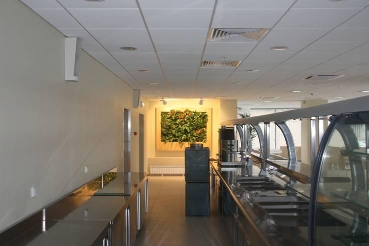 Фитокартина в столовом помещении: Столовые комнаты в . Автор – Зеленый мир,