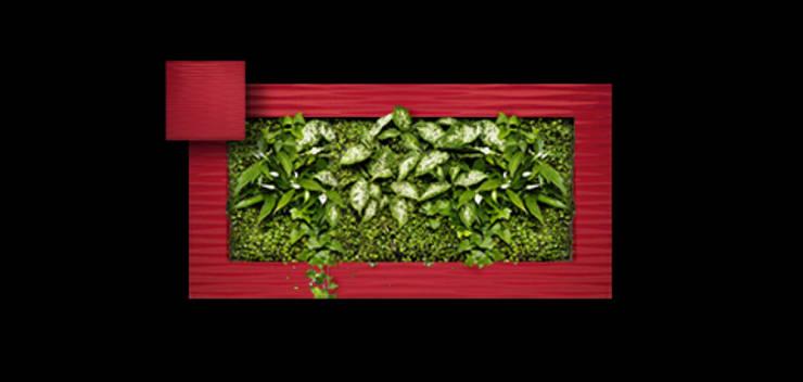 Фитокартина: Озеленение  в . Автор – Зеленый мир