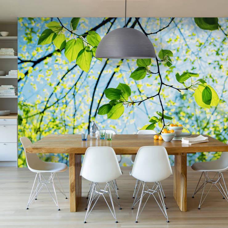 Muren & vloeren door Fotomurales