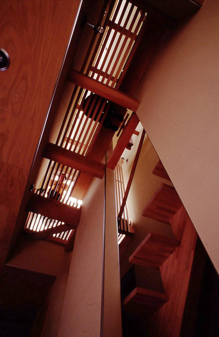 空中図書館: 濱嵜良実+株式会社 浜﨑工務店一級建築士事務所が手掛けた廊下 & 玄関です。,オリジナル