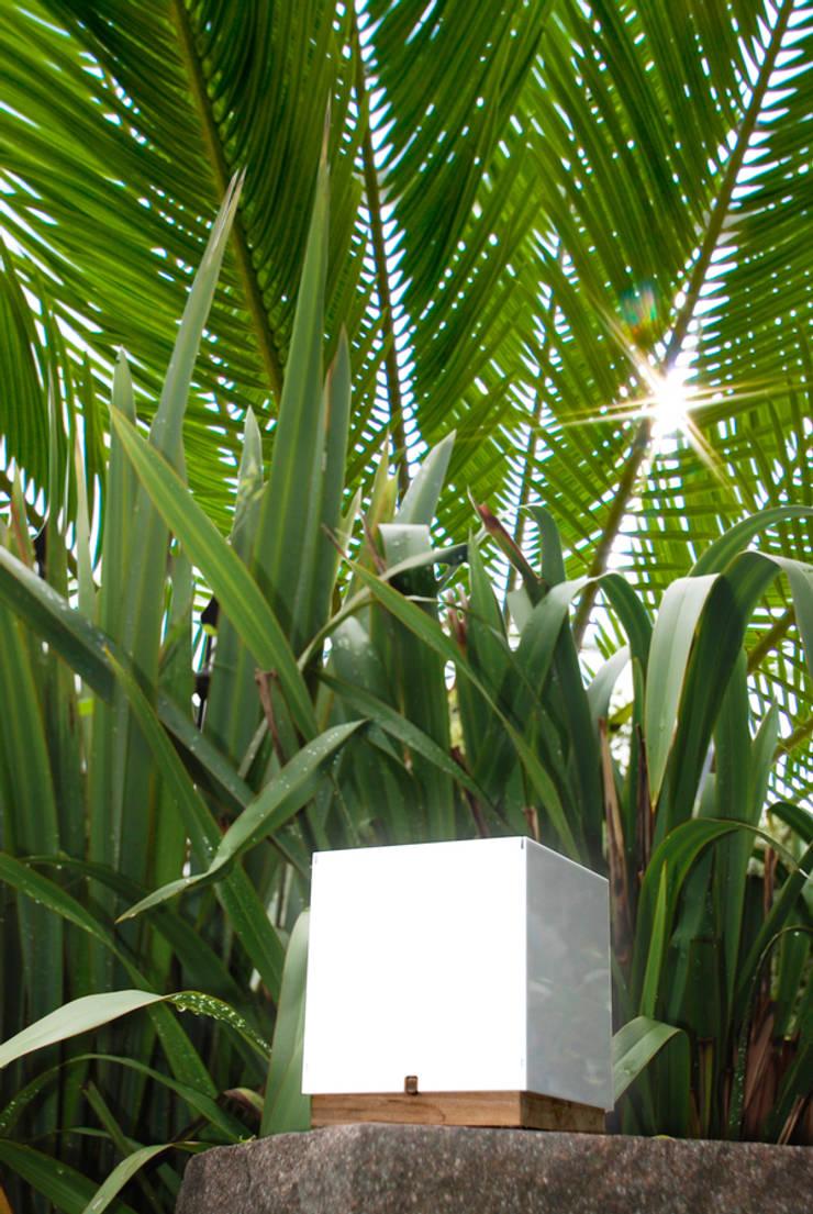 Qbica palme:  in stile  di KK3Design, Moderno